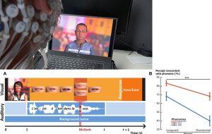 Compréhension orale ou lecture labiale : une étude suisse montre comment le cerveau privilégie le canal auditif ou visuel