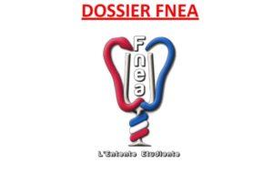 La Fnea réalise une synthèse sur la revalorisation de la prise en charge