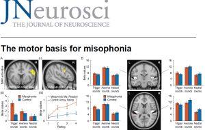 La misophonie commence à livrer ses secrets