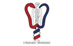 La Fnea s'implique dans la réingénierie du diplôme