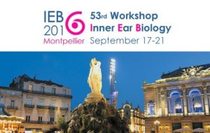 Inscriptions ouvertes pour le congrès Inner Ear Biology à Montpellier (18-21 septembre)